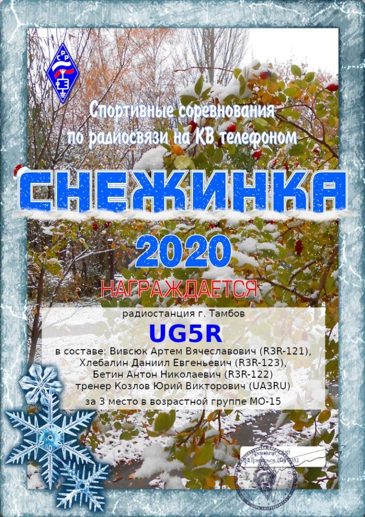 Снежинка 2020